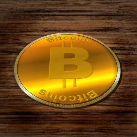 Gamble With Bitcoin